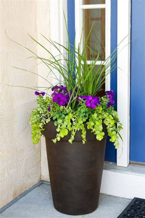 Flower Ideas For Planters by 29 Best Front Door Flower Pots Ideas And Designs For 2017