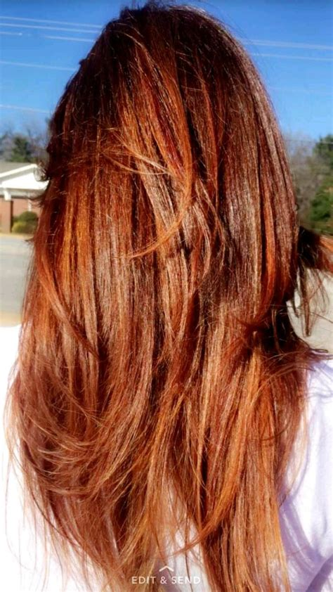 auburn copper hair color auburn hair with copper highlights hair pinterest