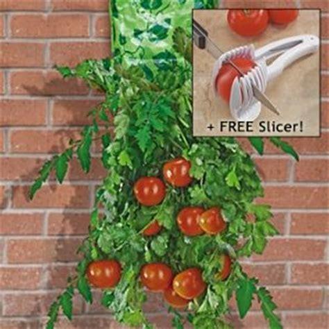 hanging tomato planters hanging tomato garden planter ebay