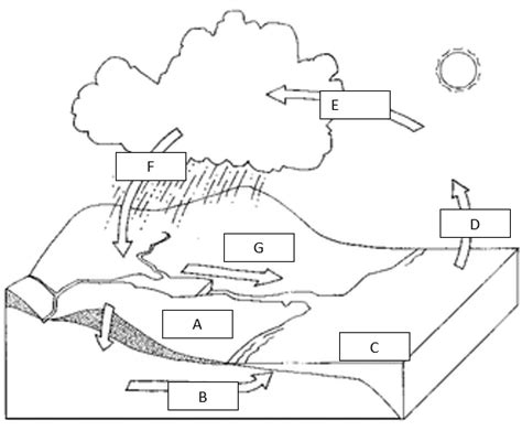 label the water cycle diagram worksheet imagequiz water cycle labeling
