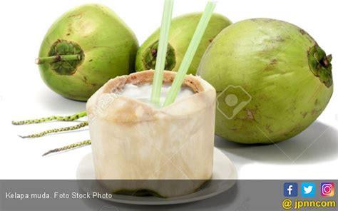 Kepala Muda Murni simak empat manfaat jika rutin minum air kelapa fajar