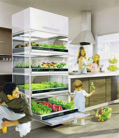 indoor vegetable gardening ideas indoor container vegetable gardening interesting ideas