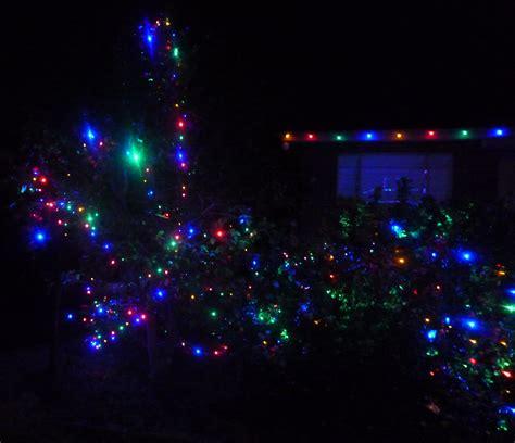 tree lights melbourne tree lights melbourne 28 images sydney westin town