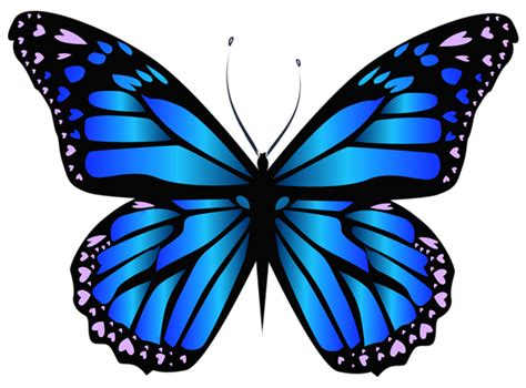 butterfly tattoo clipart blue butterfly png clipar image butterfly project