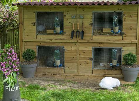 Installer un clapier pour lapin