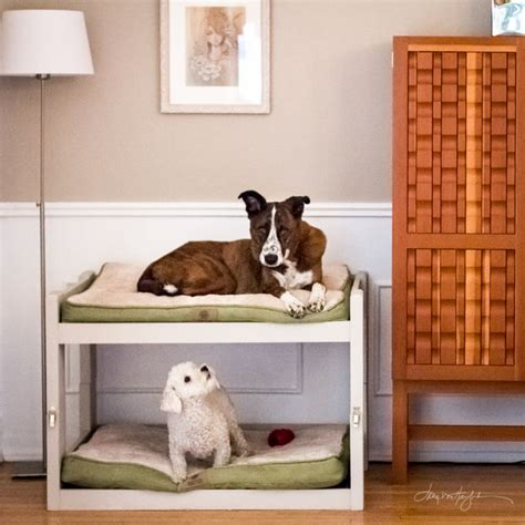 dog bunk bed diy dog bunk beds