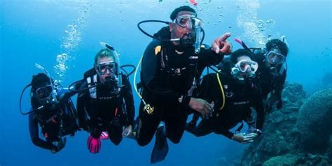 dive master how to get the divemaster of your dreams part 2