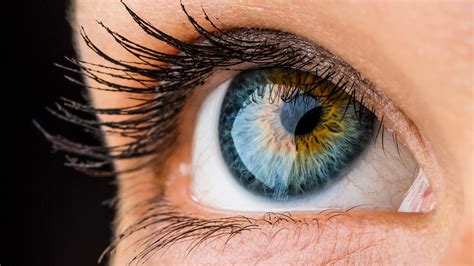 the best of ayes most of your eye s color sensors don t actually see