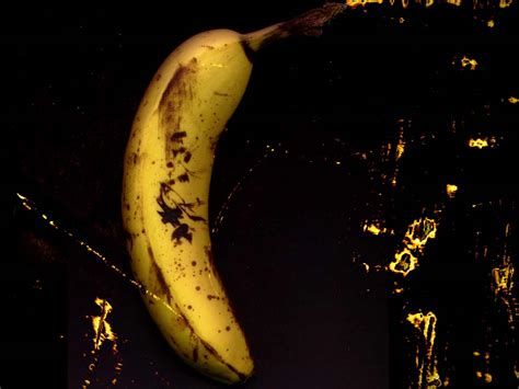 Black Bananas Wallpaper | download wallpaper banana on black background black