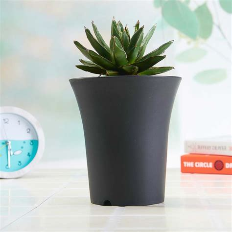 Big Plastic Flower Pots Big Plastic Flower Pot Erineum Basin Basin Flower