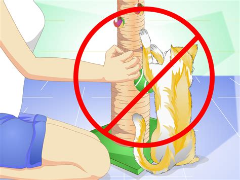 how to stop a from scratching stop cat scratching leather sofa how to stop a cat from scratching leather sofa 12