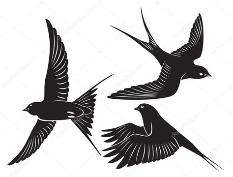 bird swallow stock vector 169 kvasay 22922500