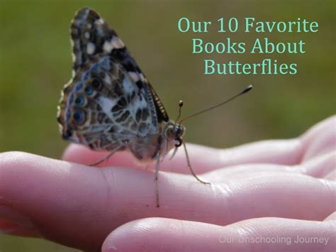 the white butterfly s journey books our unschooling journey through butterflies and