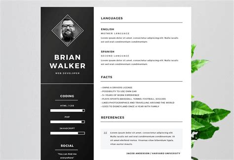cv template free microsoft word 65 eye catching cv templates for ms word free to