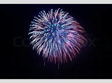 Beautiful fireworks on the black sky background | Stock ... Explosion White Background
