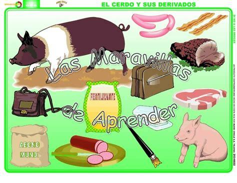 imagenes de animales y sus derivados animales y sus derivados imagui