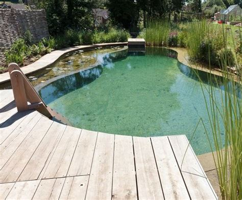 backyard swimming ponds 17 best ideas about natural pools on pinterest natural backyard pools swimming