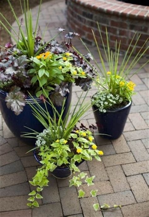 flower arrangement in a pot outdoor stuff pinterest