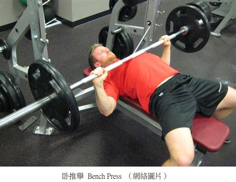 bench press range of motion 簡易運動博客 by fred wong personal trainer in hong kong 改變動作