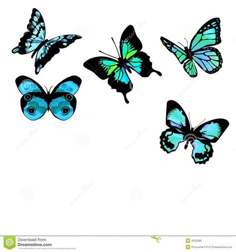 flores azules claras mariposa imagenes de archivo imagen 2050474 mariposas azules