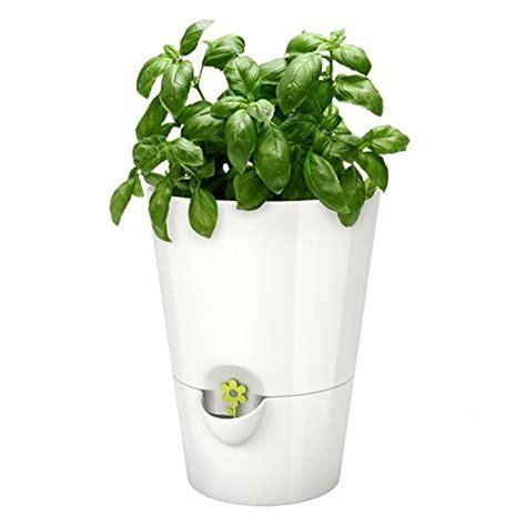 Amazon Com Emsa Germany Fresh And Healthy Herbs For Weeks | emsa germany fresh and healthy herbs for weeks indoor
