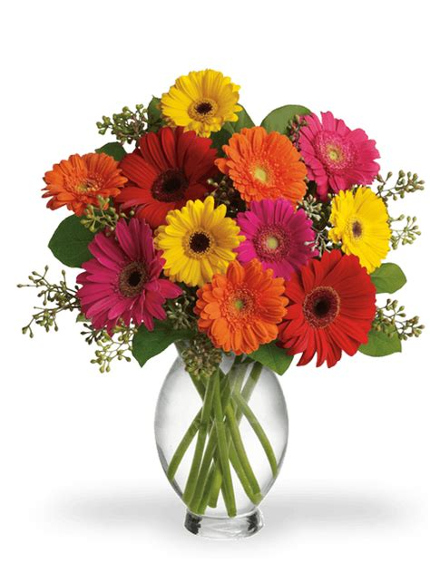 fiori a domicilio a roma consegna fiori a roma consegna fiori a domicilio a roma