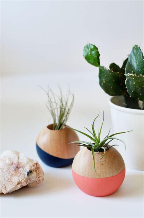 diy air plant holder diy colorblocked air plant pot cakies