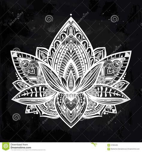vector ornamental lotus flower stock vector image