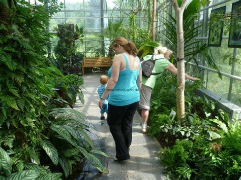 garten chemnitz botanischer garten chemnitz tropenhaus 3