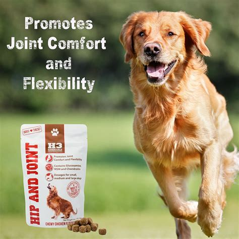hip and joint supplements for dogs h3 essentials glucosamine for dogs hip and joint supplement for dogs woofwoof