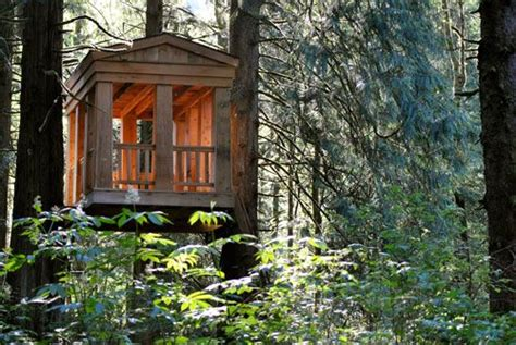 tree house bed and breakfast treehouse point bed and breakfast washington t r e e
