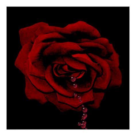 bleeding black rose tattoo the gallery for gt bleeding black and white