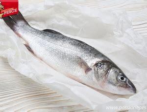 come cucinare il branzino alla griglia a scuola di pesce cucina di pesce ricette guide