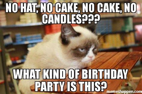 No Cake Meme - pics for gt cat birthday party meme
