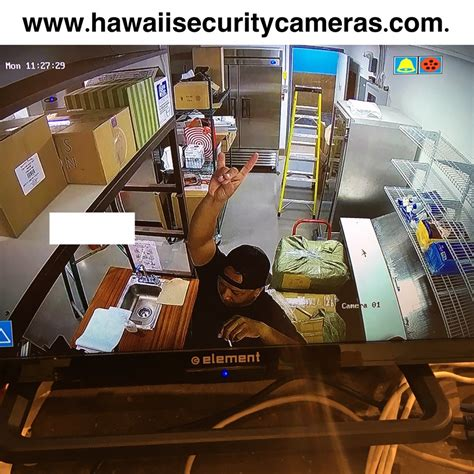 reviews smart tech hawaii home business security