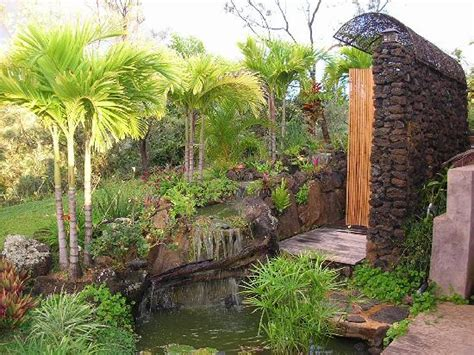 hawaii outdoor shower outdoor kitchen area picture of the palmwood kilauea