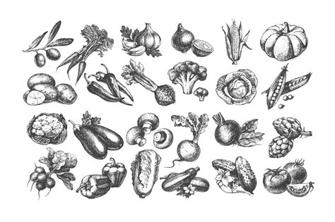 Sketch Vector Vegetables Bundle Sale 50% by Elena Pimonova