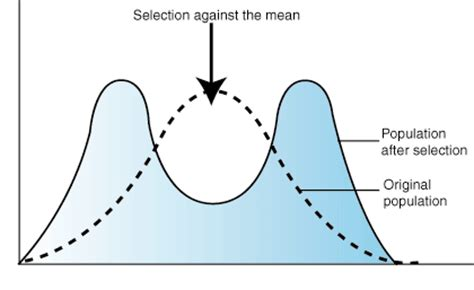 sparknotes: natural selection: types of natural selection