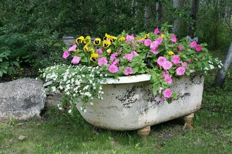 tub for flower bed flowers and butterflies pinterest