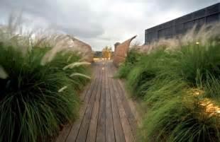 Perennials in the garden design ideas with pampas grass interior