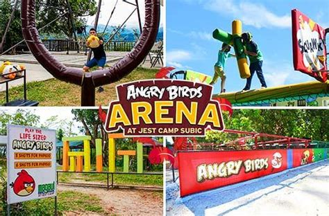 jest camps angry birds arena magaul bird park
