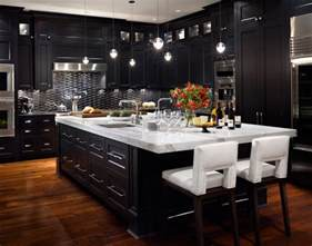 Kitchens With Dark Cabinets by Vancouver 5 Contemporary Vancouver By Citation Kitchens