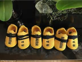 pharrell williams shares photo   triplets  shoes