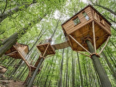 Treehouse Cabins Branson Mo magestic treehouse cabins on mohican valley landscape design