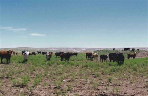 Navajo County Records Black Rock Ranch Navajo County Arizona