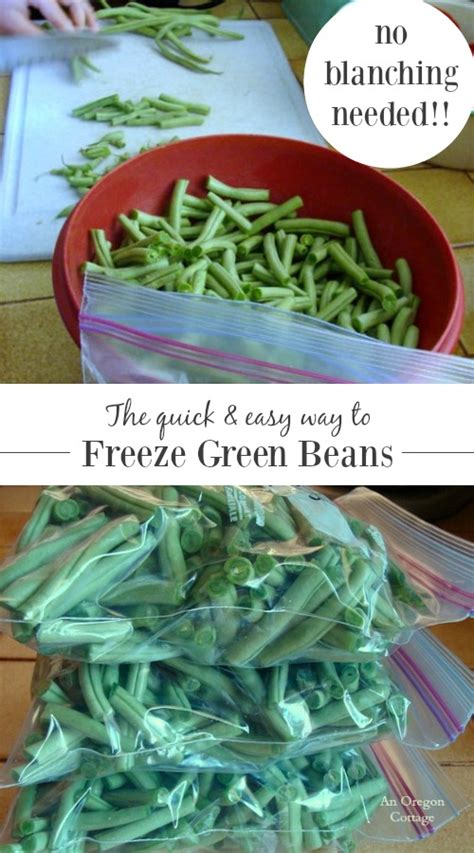 how to freeze green beans without blanching an oregon