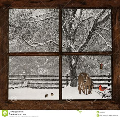 animal house window scene christmas card background stock photo image of concept 35652594