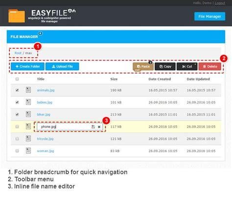 codeigniter demo project easyfile angularjs codeigniter file manager by avirtum