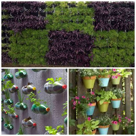 vertical gardens in your home here is how you can diy