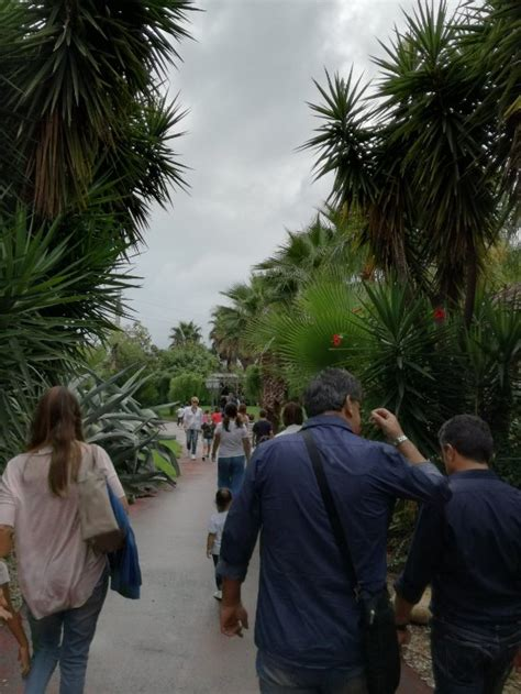 giardino botanico bari il giardino dei tempi orto botanico bari ristorante